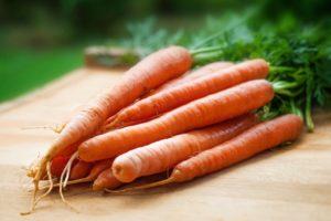 wortels invriezen