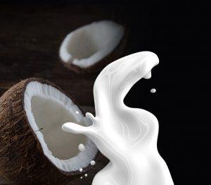 kokosmelk invriezen