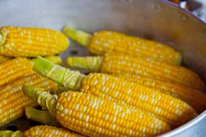maïs invriezen