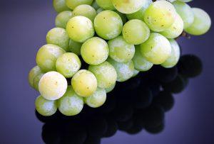 druiven invriezen